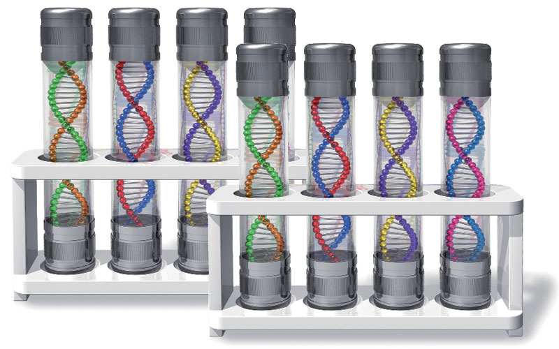 遺伝子タンパク